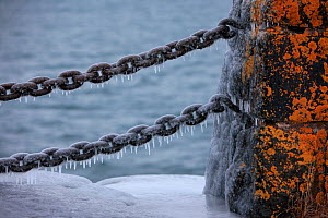 Ice covering old rusty chain & stone barrier, Lake Superior, Gooseberry Falls State Park, Minnesota, December.  -  Thomas Lazar