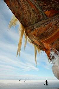 Jagged icicles hanging from towering sandstone cliff, Apostle Islands National Lakeshore, Lake Superior, Squaw Bay, Wisconsin, February 2014.  -  Thomas Lazar