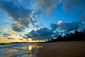 Sunset and clouds over sandy beach, Ghana, October 2010.  -  Bert  Willaert