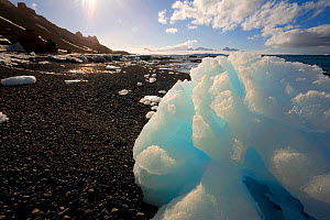 Iceberg ice lay stranded on the volcanic beach at Brown Bluff, Antarctica.  -  Bryan and Cherry Alexander