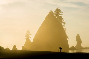Photographer taking photos of rock formations, silhouetted at sunset  on the Pacific coast of Olympic National Park, Washington State, USA. Model released. - Inaki  Relanzon