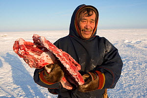 Grisha Vanuito, a Nenets herder, carrying reindeer meat at his winter camp in the South Tambey Gas Field, Yamal Peninsula, Siberia, Russia. February 2014.  -  Bryan and Cherry Alexander