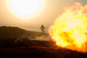 A gas field worker walking near a flare at a drilling site in the South Tambey Gas Field, Yamal Peninsula, Siberia, Russia. February 2014.  -  Bryan and Cherry Alexander