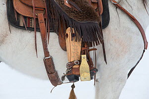 Close up of boot in stirrup with spur, on Quarter horse, Shell, Wyoming, USA.  -  Carol Walker