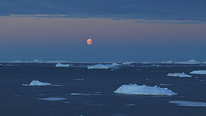 Time lapse of the moon setting , Antarctica.  -  Fred  Olivier