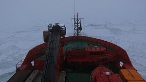 icebreaker moving through pack ice in thick fog, Peterson Bank, Antarctica.  -  Fred  Olivier