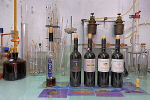 Wine making laboratory, Santorini wines, Santorini Island, Greece, May 2009. - Loic  Poidevin