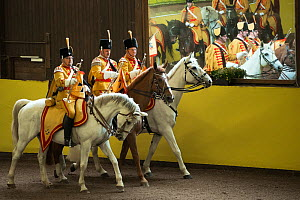 Marbach's mounted band, in traditional uniform, performing during the stud's 500th anniversary celebrations. Marbach National Stud, Swabian Alps, near Reutlingen, in Baden-Wurttemberg, Germany. May 20...  -  Kristel  Richard