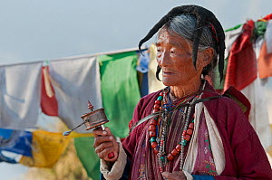 Old lady in traditional Monpa tribe dress (typical head dress made from Yak hair) with prayer mill at the Torgya festival. Galdan Namge Lhatse Monastery, Tawang, Arunachal Pradesh, India. January 2014... - Bernard Castelein