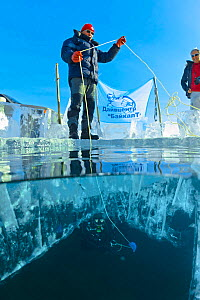 Support team on the surface of the ice helping diver below. Lake Baikal, Russia, March 2013.  -  Olga Kamenskaya