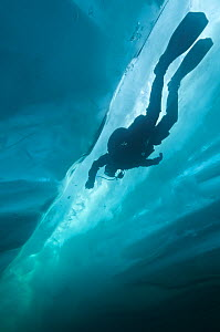 Diver exploring crack in ice under the surface, Lake Baikal, Russia, April 2013. Model released.  -  Olga Kamenskaya