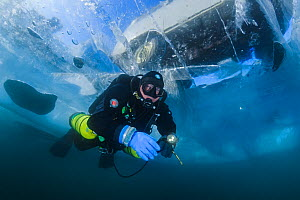 Diver swims under clear transparent ice (1m thick) with minivan visible above. Lake Baikal, Russia, March 2012. Model released. - Olga Kamenskaya