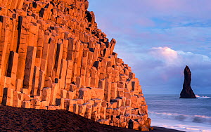 Basalt columns at Vik, the southernmost village in Iceland. February 2014.  -  Ross Hoddinott