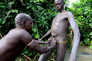 Before the 'Donga' stick fight, a Suri / Surma warrior applies paint made of clay and minerals to the body of another warrior. Omo river Valley, Ethiopia, September 2014. - Eric Baccega