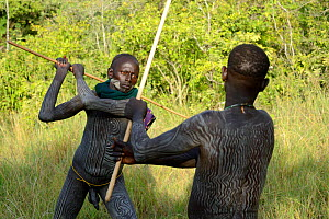 'Donga' stick fighters, young men of the Suri / Surma tribe. Omo river Valley, Ethiopia, September 2014. - Eric Baccega