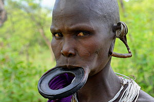Portrait of Suri / Surma woman wearing lip plate in her lower lip. Omo River Valley, Ethiopia, September 2014. - Eric Baccega