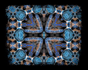 Kaleidoscope pattern formed from picture of Greenbottle blue tarantula (Chromatopelma cyaneopubescens) - see original image number 01482830 EMBARGOED FOR NAT GEO UNTIL the end of 2015  -  Michael  D. Kern