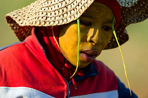 Portrait of female farm worker planting Onions (Allium cepa) on Suikerbossie farm, Koue Bokkeveld / Cedarberg region, South Africa. She has onions tucked into her hood to keep the flying insects away,...  -  Cheryl-Samantha  Owen