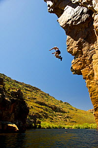 Man jumping from a cliff into the Twee River to cool down during mid-summer. The Twee River is home to the critically endangered Twee River redfin (Barbus erubescens). Koue Bokkeveld / Cedarberg regio...  -  Cheryl-Samantha  Owen