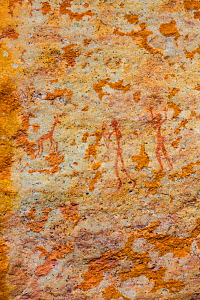 Figures of humans hunting with bows and arrows in rock art, Sevilla Bushman Rock Art Trail, Clanwilliam, Cederberg Mountains, Western Cape province, South Africa, September 2012.  -  Juan  Carlos Munoz