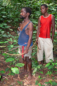 Mbuti Pygmy men with bows and arrows for hunting, Democratic Republic of the Congo, Africa, November 2011.  -  Steve O. Taylor (GHF)