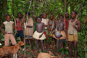 Mbuti pygmy initiation hunt, with two boys in traditional blue body paint and straw skirt. One boy is holding catch of Blue Duiker (Philantomba monticola) Ituri Rainforest, Democratic Republic of the... - Steve O. Taylor (GHF)