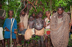 Mbuti pygmy initiation hunt, with two boys in traditional blue body paint and straw skirt. One boy is holding catch of Blue Duiker (Philantomba monticola). As well as using bows and arrows in this hun... - Steve O. Taylor (GHF)