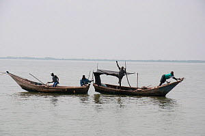 Fishermen in boats on Lake Albert at the border of  Democratic Republic of the Congo and Uganda, Democratic Republic of the Congo, Africa, January 2012. - Steve O. Taylor (GHF)