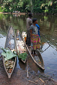 Men with vegetables in dugout wooden canoes on riverbank, Monkoto, Salonga National Park, Equateur, Democratic Republic of the Congo, May 2012.  -  Steve O. Taylor (GHF)