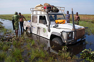 Jeep stuck in flooded road to Kundelungu National Park, Katanga, Democratic Republic of the Congo, April 2012. - Steve O. Taylor (GHF)