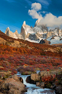 Waterfall and autumn foliage with view to Mount Fitz Roy. El Chalten, Patagonia, Argentina. April 2013. - Hougaard Malan