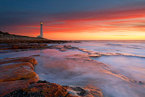 Lighthouse at sunset. Kommetjie, Cape Town, South Africa. November 2008.  -  Hougaard Malan