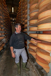Cheesemaker Mr Perraudat in cellar with Beaufort cheeses, Bourg-Saint-Maurice, Savoie, Rhone-Alpes, France, May 2014. - Pascal  Tordeux