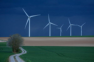 Wind farm under dark clouds before a storm, Ribemont, Picardy, France, April 2014.  -  Pascal  Tordeux