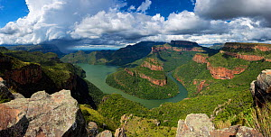 Thunderstorm over Blyde River canyon landscape. Mpumalanga, South Africa. March 2013. Non-ex.  -  Hougaard Malan