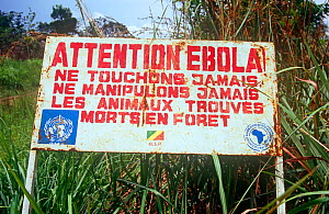 Warning notice for Ebola during the 2008 pandemic, northern Republic of the Congo (Congo-Brazzaville), 2008.  -  Steve O. Taylor (GHF)