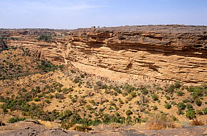 View from the Bandiagara escarpment looking down onto ancient Tellem tombs. Mali, 2005-2006. - Steve O. Taylor (GHF)