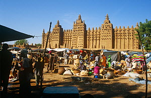 Market outside Djenne mosque. Built in 1325, it is the world's largest mud / clay  building. Mali, 2005-2006.  -  Steve O. Taylor (GHF)