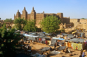 View of Djenne-Djeno mosque and market. Mali, 2005-2006.  -  Steve O. Taylor (GHF)