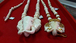 Asia,South East Asia,Thailand,Moving Image,Footage,Handheld,Jewelry,Jewellery,Jewellry,Necklace,Necklaces,Building,Store,Shop,Shops,Stores,Ivory ,Conservation,Wildlife trade,Ivory,Conservation issues,... - Elephant head necklaces made from elephant ivory for sale in a s