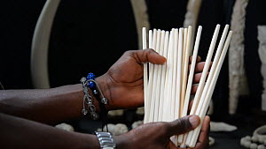 People,African Descent,Man,Illegal,Africa,Central Africa,Democratic Republic of the Congo,Kinshasa,Moving Image,Footage,Equipment,Utensil,Tableware,Cutlery,Chopsticks,Chopstick,Market,Land Vehicle,Mot... - Man showing ivory chopsticks for sale in the back of a car in Ki