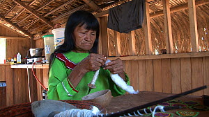 Spinning,Spin,Weaving,Weave,Weaver,Weavers,Woven,People,Traditional,Latin America,South America,Peru,Moving Image,Footage,Sound,String,Cord,Cords,Strings,Strung,Twine,Twined,Twines,Thread,Threads,Text... - Shipibo-Conibo woman preparing cotton on a spindle to weave a tr