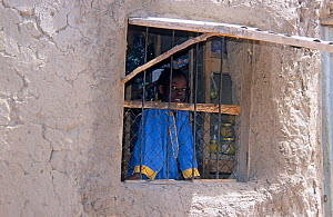 Boy looking out of window, son of village shopkeeper. Chad, 2002-2003.  -  Steve O. Taylor (GHF)