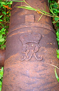 17th century British cannons at Bunce Island slave trading fort. Sierra Leone, 2004-2005.  -  Steve O. Taylor (GHF)