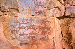 Battle mural cave painting showing human and animal figures, Guilemsi, central Mauritania, 2004.  -  Steve O. Taylor (GHF)