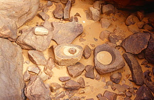 Abandoned artifacts including milling stones, Guilemsi, central Mauritania, 2005. - Steve O. Taylor (GHF)