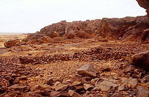 Stone circles in rocky landscape, Guilemsi, central Mauritania, 2004. - Steve O. Taylor (GHF)