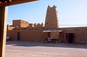 Ancient mosque built from mud. Agadez, Niger, 2005.  -  Steve O. Taylor (GHF)