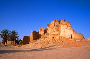Ancient abandoned fort that once guarded trade routes. Northern Niger, 2005.  -  Steve O. Taylor (GHF)