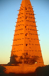 13th century Mosque, Agadez, Niger, 2005.  -  Steve O. Taylor (GHF)